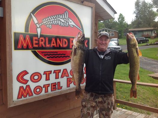 Walleye May 24